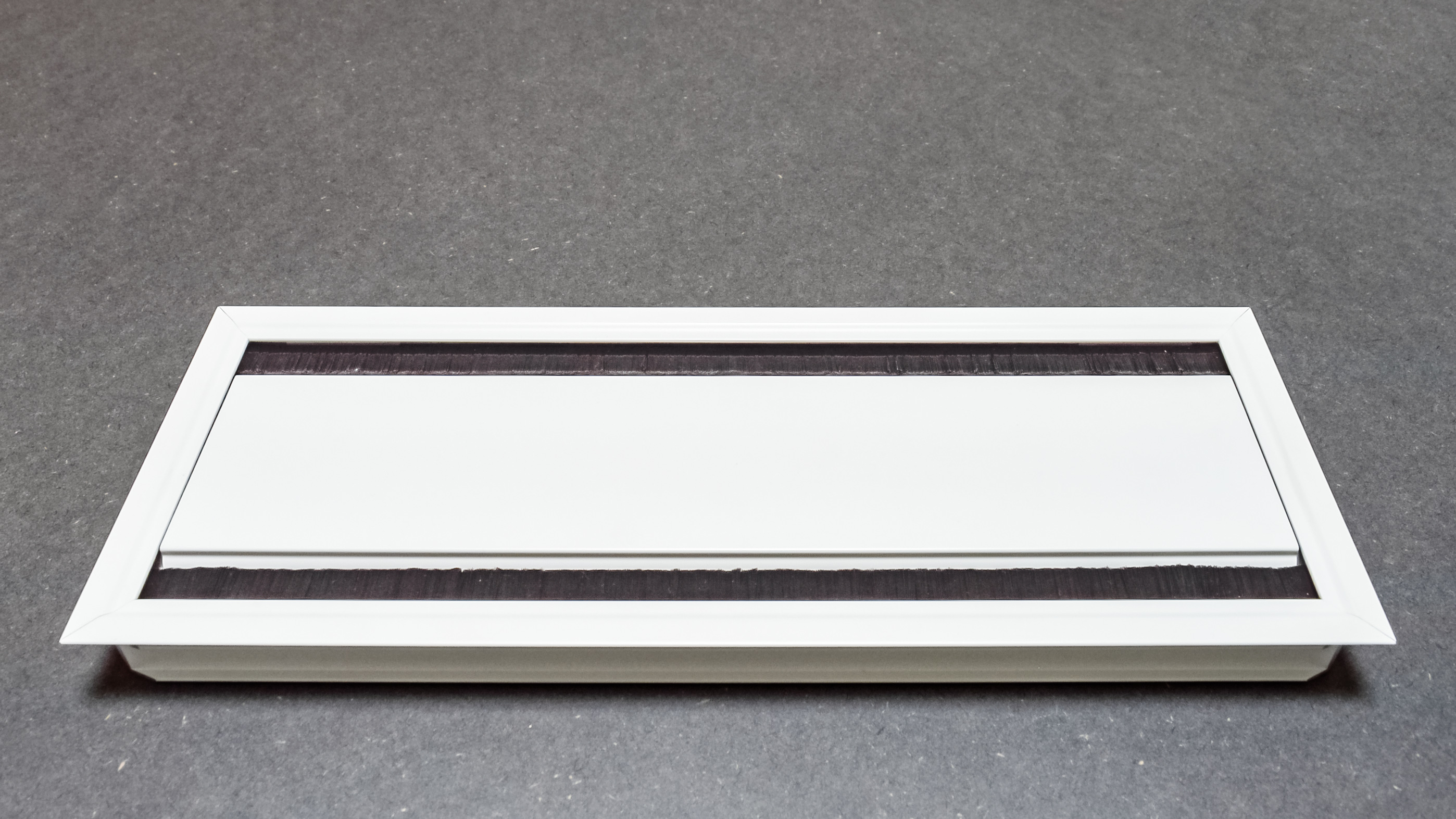 Dual Hinged Access Plate | White